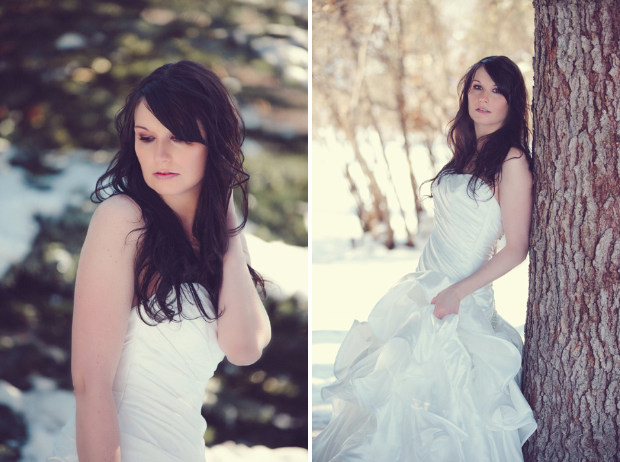 calgary beauty and boudoir photographer, winter wedding photos Calgary, glam the dress, trash the dress, svetlana yanova, edworthy park photos